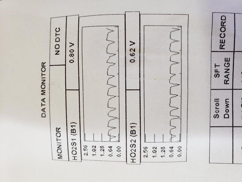 LineGraphedO2s.jpg